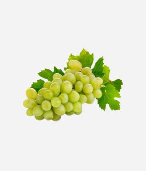 Grapes Green Globe