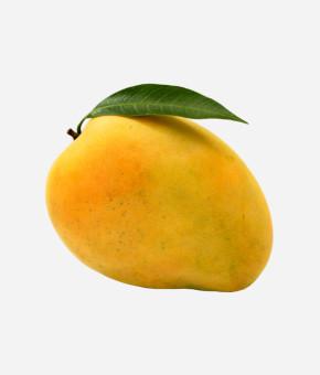 Alphonsos Mango