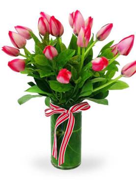 Vase Arrangement of Orchids
